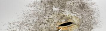 Lekdetectie Apeldoorn ontdekt schimmelvorming en gaten in het plafond als gevolg van een lekkage